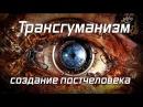Ольга Четверикова. Они ведают, что творят оцифровка человека