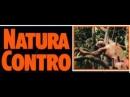 Зеленый ад / Natura contro 1988