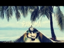 Panama Riddim Dancehall ⁄ Reggaeton Beat Instrumental 2017 - Alann Ulises