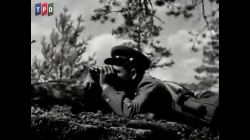 Брестская крепость (документальный фильм)