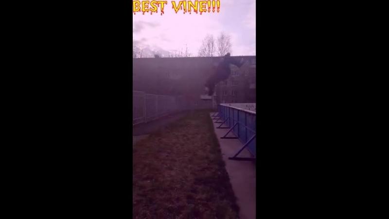 З А Х А Р К А С Н О В О В Т Е М Е)31(BEST VINE)