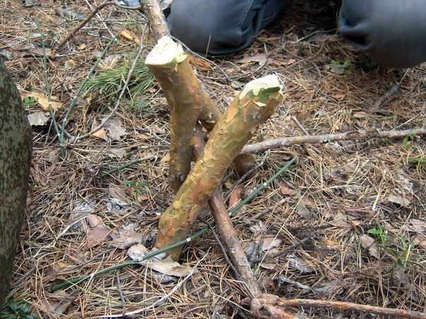 TsUF2dS37ik - Делаем простейшее укрытие в лесу для трех человек