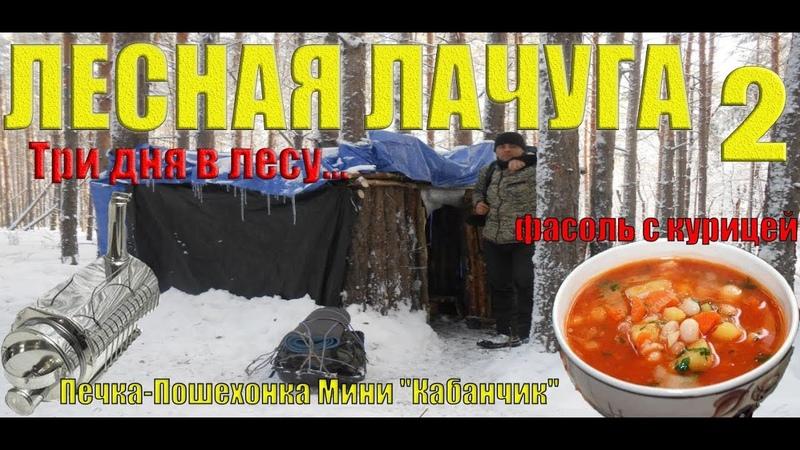 ЛЕСНАЯ ЛАЧУГА 2 | Три дня в зимнем лесу| походная печка пошехонка мини Кабанчик
