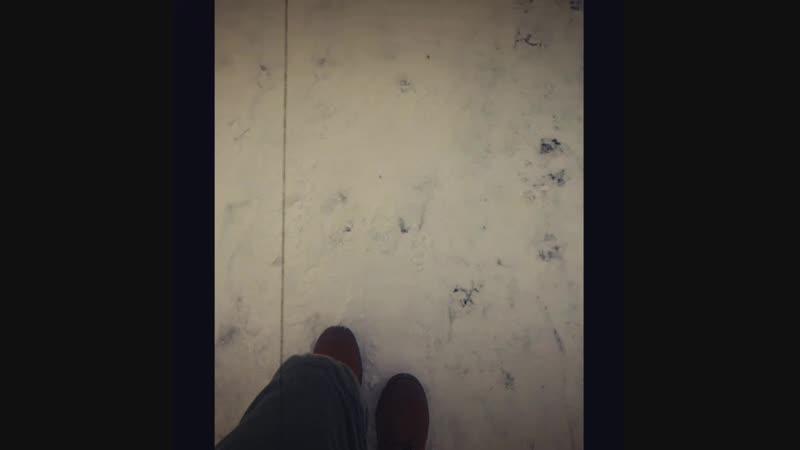 Самсунг, замедленная съёмка фильтр и Плазма