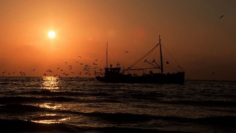 Скрытые угрозы с Николаем Чиндяйкиным Охота за русской рыбой