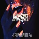 Обложка ЧЕРНАЯ ПАНТЕРА - GAYAZOV BROTHER