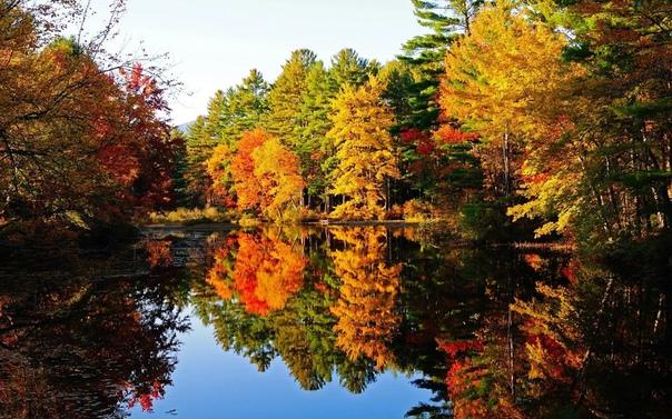 Приметы 2 сентября: лучший день для желаний Сегодня по народному календарю Самойлов день. Все заботы наших предков-земледельцев сегодня были связаны с уборкой свеклы. В основном это было женское