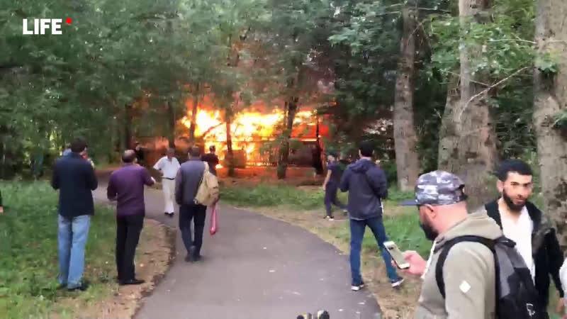Пожар в Измайловском парке