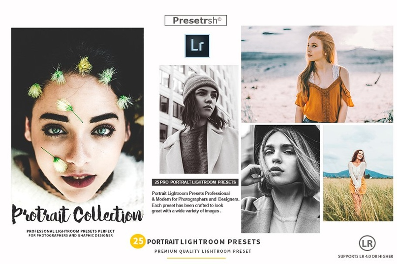 25 Pro Portrait Lightroom Presets.zip