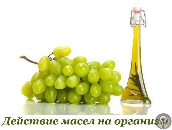 КАК ДЕЙСТВУЮТ РАЗЛИЧНЫЕ МАСЛА НА ЧЕЛОВЕЧЕСКИЙ ОРГАНИЗМ. 1. Масло виноградных косточек. Несмотря на то, что многим из нас масло виноградных косточек кажется куда менее банальным, чем, скажем,