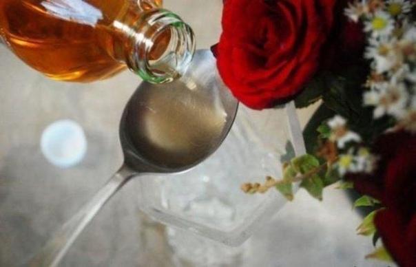 4 варианта продления жизни срезанных цветов