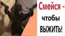 Лютые приколы. ЧТОБЫ ВЫЖИТЬ - СМЕЙСЯ Ржака до СЛЁЗ – САМОЕ СМЕШНОЕ ВИДЕО - Domi Show
