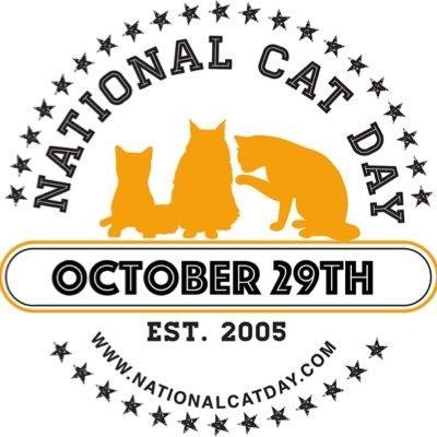 Сегодня отмечается Национальный день котиков