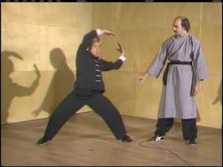 The Eight Animal School of Pa Kua Chang. Jerry Alan Johnson.  Vol 1