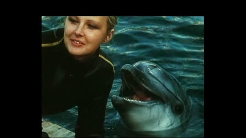 Люди и дельфины 1983 1984 3 серия