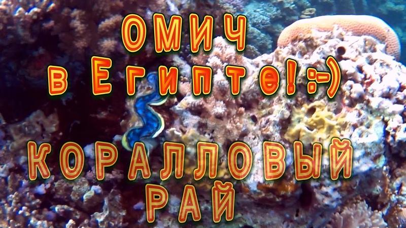 Шарм Эш Шейх. Волшебство коралловых рифов и магия факира.