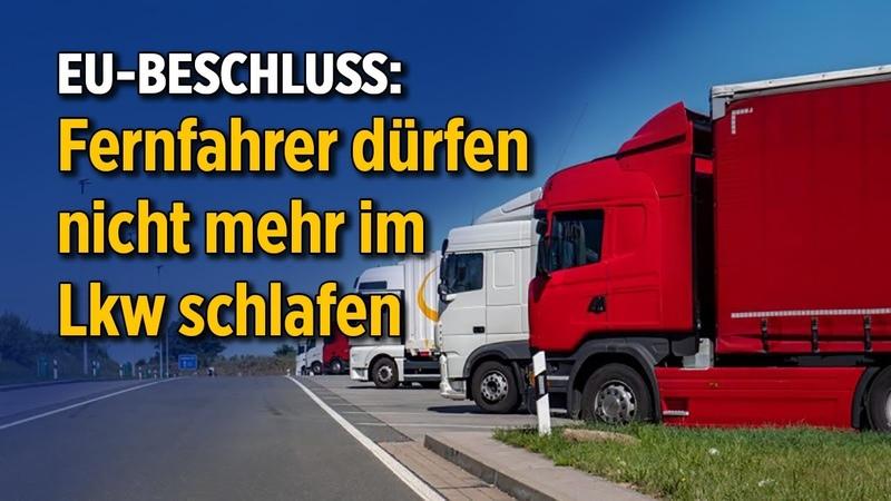 EU Beschluss Fernfahrer dürfen nicht mehr im Lkw schlafen Spediteure bangen um ihre Unternehmen
