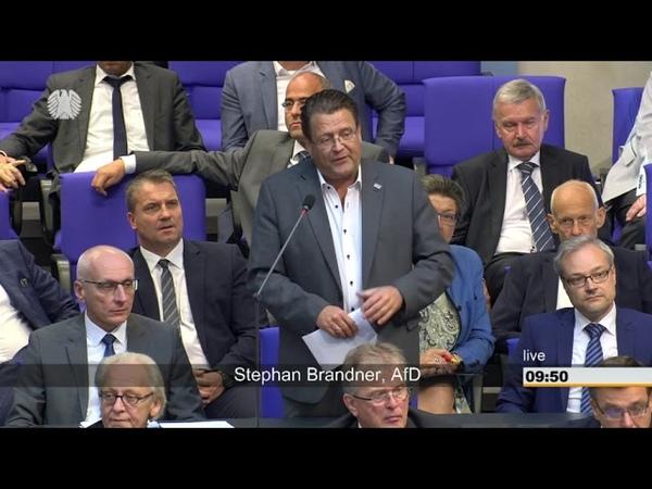 Wütende Fragen von Stephan Brandner (AfD) an Merkel: Ihre Rede verhöhnt die Opfer (12.09.2018)