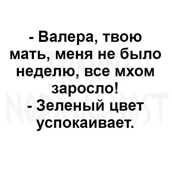 https://sun1-15.userapi.com/c543101/v543101573/59530/8q8dAf16tgI.jpg