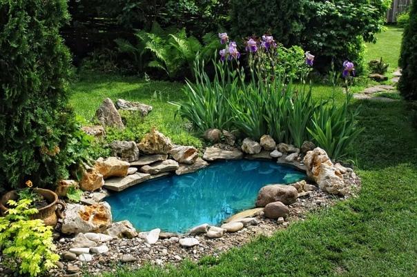 3 причины, сделать водоем на даче: планируем новый сезон.