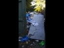 Вывоз мусора просим помощи 2018 09 24 1
