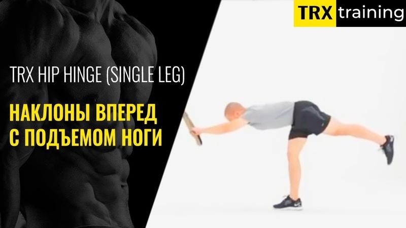 Наклоны вперед с подъемом ноги на TRX HIP HINGE SINGLE LEG