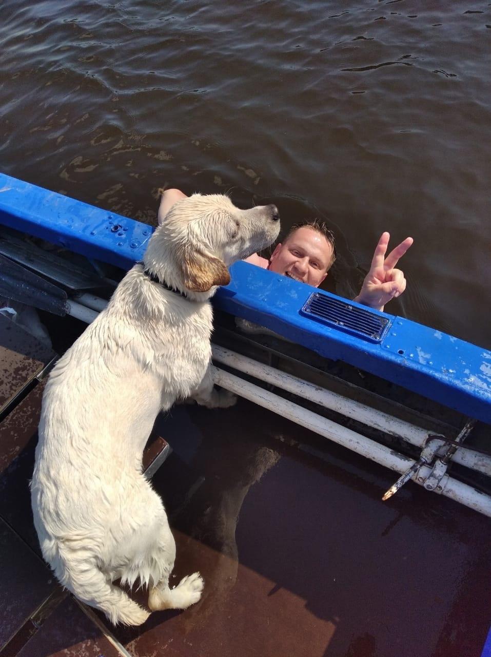 Собаку и женщину спасли в Удмуртии, которые
