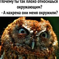 Богомолов Алексей