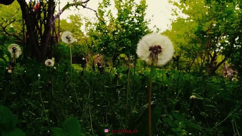 Сейранат Наджафова Nature of Dagestan