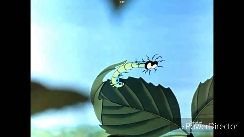 Незабываемые моменты из мультфильма Путешествие муравья