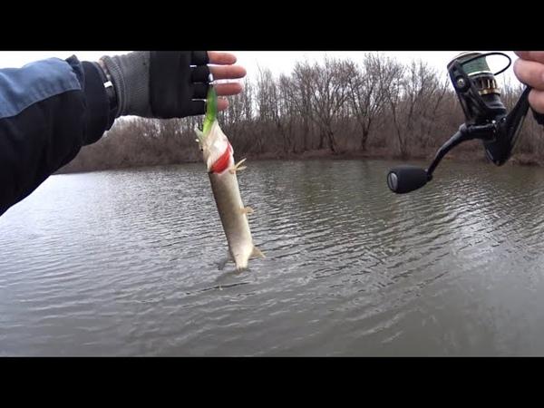 Рыбалка на спиннинг в КАРАНТИН 2020 поиск рыбных мест