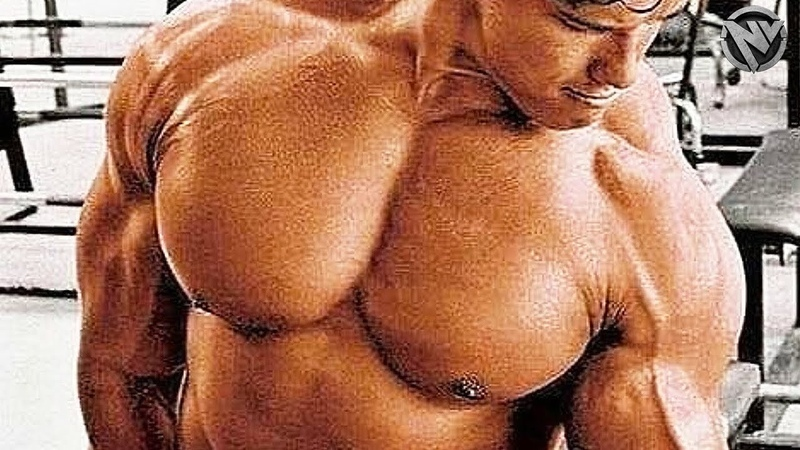 THE PUMP GET IN THE ZONE ARNOLD GYM MOTIVATION