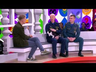 Талисман новосибирских пожарных кот Гидрант стал героем телешоу на федеральном телеканале