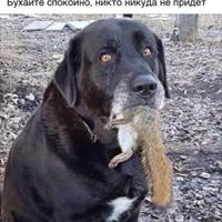 Mykola Baron