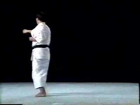 Pinan Nidan Shito Ryu