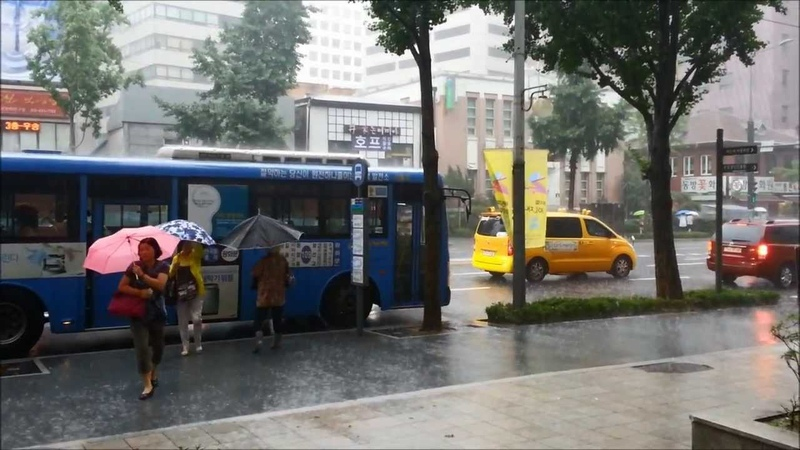 Heavy Rain in Jongno, Seoul