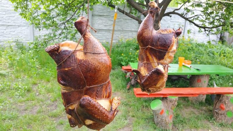 Курица горячего копчения рецепт для начинающих