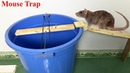 Mouse Trap Rat Trap Easy Saving Mouse How to make A Mouse Trap With PVC Water PiPe