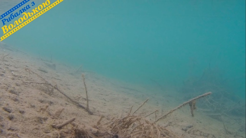Річка Бистриця Надвірнянська підводна зйомка Річка біля м Івано Франківськ відео під водою