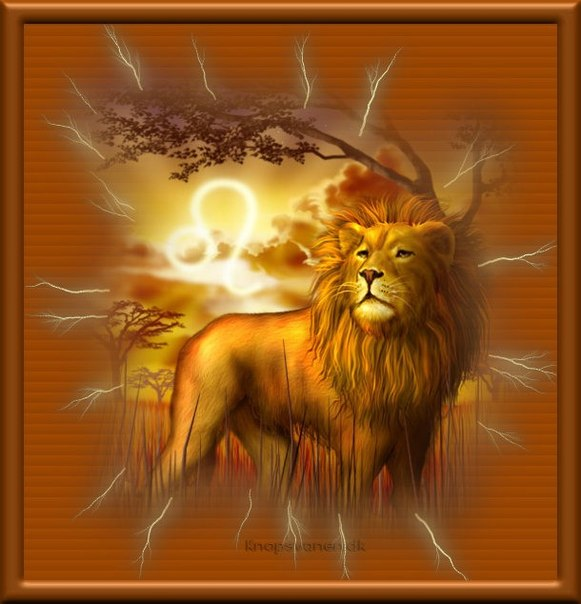 Поздравительные картинки со львами