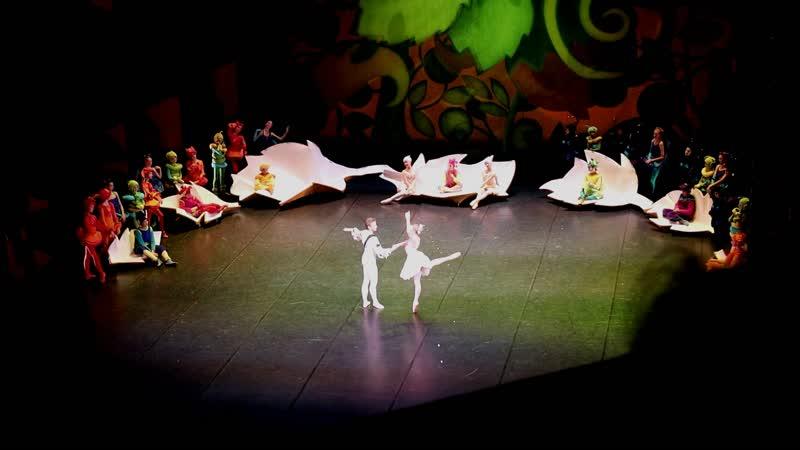 Аполлинария Картавцева и Маркусс Забелло в балете Белоснежка и 7 гномов Рижская Опера 23 02 2020