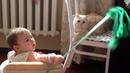 Девочка Настя играет с милым котиком Nastya plays Приколы с животными Пирколы с детьми