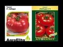Рейтинг лучших ранних сортов томатов