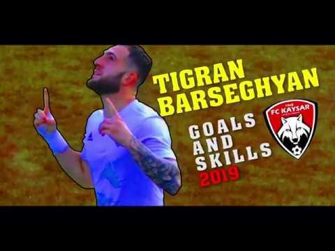 2019.12.22 TIGRAN BARSEGYAN GOALS AND SKILLS 2019